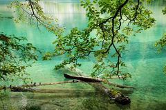 Ήρεμη σαφής λίμνη Στοκ Φωτογραφία