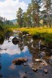 ήρεμη σκηνή ποταμών βουνών τ&omicr Στοκ Φωτογραφία