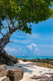Ήρεμος αμμώδης με τις σκιές δέντρων στην παραλία Phi Phi στο νησί, Kra στοκ φωτογραφίες με δικαίωμα ελεύθερης χρήσης