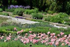 Ήρεμος βοτανικός κήπος στοκ εικόνες με δικαίωμα ελεύθερης χρήσης