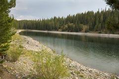 Ήρεμος κόλπος της λίμνης του Τζάκσον, μεγάλο εθνικό πάρκο Teton, Ουαϊόμινγκ στοκ εικόνα με δικαίωμα ελεύθερης χρήσης