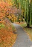 Ήρεμος περίπατος μέσω του πάρκου, με το φύλλωμα πτώσης που προσθέτει στο ειρηνικό συναίσθημα στοκ εικόνα με δικαίωμα ελεύθερης χρήσης