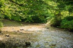 Ήρεμος ποταμός βουνών το καλοκαίρι στοκ φωτογραφία με δικαίωμα ελεύθερης χρήσης