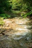 Ήρεμος ποταμός βουνών το καλοκαίρι στοκ φωτογραφία