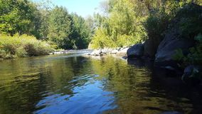 Ήρεμος ποταμός κάτω από μια πολυάσχολη γέφυρα το καλοκαίρι απόθεμα βίντεο