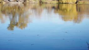 Ήρεμος ποταμός το απόγευμα φθινοπώρου και παλαιά βάρκα κοντά στην ακτή απόθεμα βίντεο