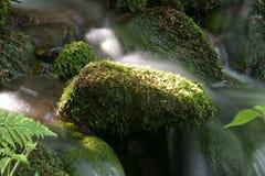 ήρεμος ποταμός στοκ φωτογραφίες