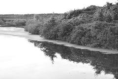 Ήρεμος ποταμός Στοκ Εικόνα