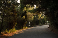 Ήρεμος δρόμος στο λόφο Marjan στη διάσπαση στοκ εικόνα