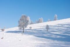ήρεμος χειμώνας σκηνής Στοκ Φωτογραφίες