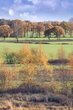 Ήρεμο αγροτικό τοπίο στα χρώματα φθινοπώρου, Turnhout, Βέλγιο Στοκ Εικόνες