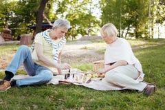 Ήρεμο ηλικίας σκάκι παιχνιδιού ζευγών στο πικ-νίκ Στοκ Φωτογραφίες