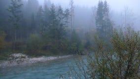 Ήρεμο ομιχλώδες πρωί σε μια κοιλάδα βουνών φιλμ μικρού μήκους