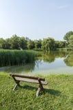 Ήρεμο πάρκο Στοκ εικόνες με δικαίωμα ελεύθερης χρήσης