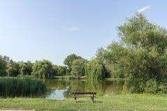 Ήρεμο πάρκο Στοκ εικόνα με δικαίωμα ελεύθερης χρήσης