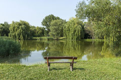 Ήρεμο πάρκο Στοκ Εικόνες