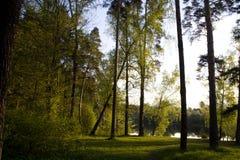 Ήρεμο πρωί Στοκ φωτογραφία με δικαίωμα ελεύθερης χρήσης