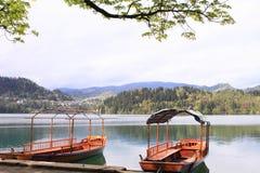Ήρεμο τοπίο λιμνών της Σλοβενίας Στοκ Εικόνες