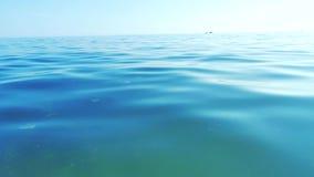 Ήρεμο ωκεάνιο και μπλε σαφές seascape ουρανού ο ουρανός και η θάλασσα, θάλασσα είναι πολύ ήρεμος τρόπος ζωής με τους ευγενείς κυμ απόθεμα βίντεο
