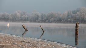 Ήρεμο misty πρωί στον ποταμό απόθεμα βίντεο