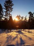 ήρθε ηλιοβασίλεμα ομίχλης επάνω στο χειμώνα Στοκ Εικόνα