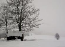 ήρθε χειμώνας Στοκ εικόνα με δικαίωμα ελεύθερης χρήσης