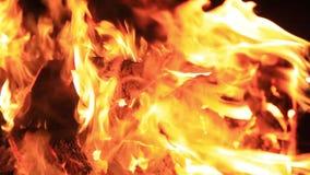 Ήχος των γρύλων νύχτας και του τριξίματος πυρκαγιάς Ακραίο βίντεο κινηματογραφήσεων σε πρώτο πλάνο μιας φωτιάς Κάψιμο ενός πάγκου απόθεμα βίντεο