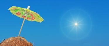 Ήλιος και καρύδες Στοκ Φωτογραφίες