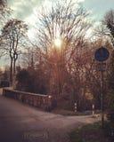 Ήλιος με την αντανάκλαση Στοκ εικόνες με δικαίωμα ελεύθερης χρήσης