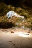 Ήλιος που λάμπει μέσω μιας τρύπας στο ανώτατο όριο σπηλιών της Αρούμπα Στοκ φωτογραφίες με δικαίωμα ελεύθερης χρήσης