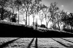 Ήλιος που λάμπει μέσω των δέντρων και των σκιών στη χλόη σε Antietam Ν Στοκ φωτογραφία με δικαίωμα ελεύθερης χρήσης
