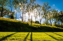 Ήλιος που λάμπει μέσω των δέντρων και των σκιών στη χλόη σε Antietam Ν Στοκ Εικόνα