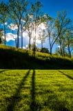 Ήλιος που λάμπει μέσω των δέντρων και των σκιών στη χλόη στο εθνικό πεδίο μάχη Antietam Στοκ Εικόνες