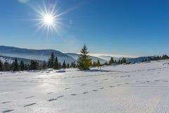 Ήλιος που λάμπει με τη φλόγα φακών πέρα από τα χιονισμένα γιγαντιαία βουνά Στοκ Εικόνα