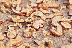 Ήλιος που ξεραίνει τα τεμαχισμένα μήλα με την επιλεγμένη εστίαση Στοκ Φωτογραφίες