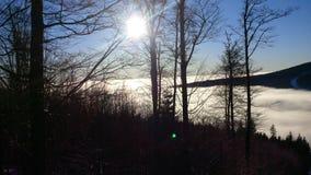 Ήλιος στη φύση Στοκ φωτογραφία με δικαίωμα ελεύθερης χρήσης