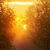 Ήλιος το πρωί Στοκ φωτογραφία με δικαίωμα ελεύθερης χρήσης