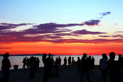 ήλιος χαιρετισμού Στοκ Εικόνες