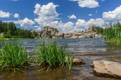 λίμνη δασική Στοκ Εικόνες