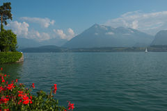 λίμνη Ελβετία thun Στοκ εικόνα με δικαίωμα ελεύθερης χρήσης
