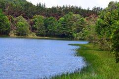 λίμνη και δάσος, Κόστα Ρίκα Στοκ φωτογραφία με δικαίωμα ελεύθερης χρήσης