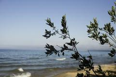 λίμνη Μίτσιγκαν Στοκ φωτογραφίες με δικαίωμα ελεύθερης χρήσης