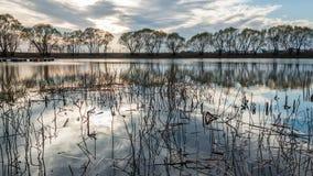 λίμνη μικρή Στοκ Φωτογραφία