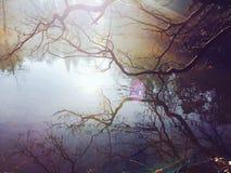 λίμνη που απεικονίζεται Στοκ Εικόνα