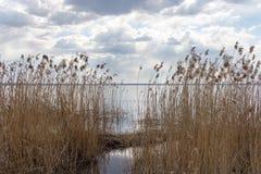 λίμνη σύννεφων Στοκ Εικόνες