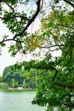 λίμνη kiem του Ανόι ho η hoan λίγο παλαιό σύμβολο μερών ο πύργος Βιετνάμ Ο πύργος Tortoise είναι το σύμβολο του Ανόι, VI Στοκ φωτογραφία με δικαίωμα ελεύθερης χρήσης