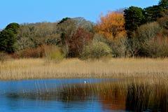λίμνη killarney Στοκ Φωτογραφίες