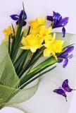 ίριδα ανθοδεσμών daffodils Στοκ Φωτογραφία
