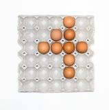 δίσκος εγγράφου αυγών για την αγορά Στοκ Εικόνα