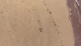 Ίχνη άμμου στην άσπρη αμμώδη παραλία _ φιλμ μικρού μήκους